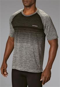 ba42a7a78 Camiseta Masculina Fitness Stripes 70677 Lupo